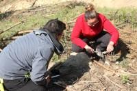 szkolenie-bushcraftowe047