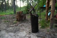 szkolenie-survival-lipiecl046